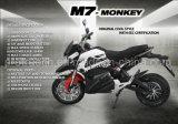 Hete Verkopende het Rennen Elektrische Motorfiets M7 met de EEG