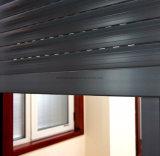 장식적인 알루미늄 셔터; 롤러 셔터 Windows