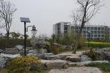Marcação &RoHS Aprovado Piscina Jardim Luz Solar