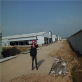 Qingdao Hapy ein EndGeflügelfarm-Aufbau