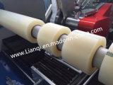 Lianqi brachte Konfigurations-Selbstrollenausschnitt-Maschine für BOPP/PE/PVC Band-Maschine voran