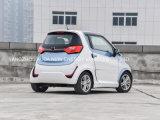 2 Deuren van uitstekende kwaliteit 2 de Elektrische Auto van Zetels