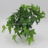Pequeño bonsái de planta Artificial Hiedra inglesa para el Departamento Deccoration
