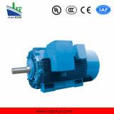 Мотор электрической индукции серии Ie2 трехфазный (чугун) 75kw-4/100HP-4