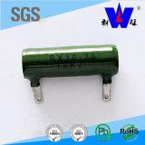 Rx20 tipo resistor variable herido alambre del esmalte con ISO9001