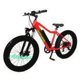 단속기 바닷가 함 성인을%s 전기 자전거 뚱뚱한 타이어 전기 자전거