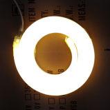 고품질 110V/220V/12V/24V는 LED 네온 코드를 방수 처리한다
