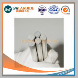 CNC van de Staaf van het Carbide van het wolfram de Hulpmiddelen van het Deel van de Slijtage