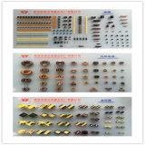 Resistor Wirewound do esmalte com ISO9001 (Rx20)
