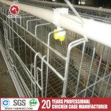 Ferme avicole de calques pour l'entreprise d'élevage de poulet