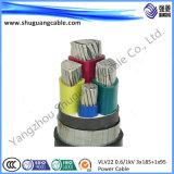 VV22t 3+1 de coeurs isolés de PVC et bandes en acier gainé blindé conducteur concentrique de câble d'alimentation