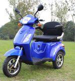 Motorino Handicapped 2018