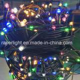 6 Farben schwärzen Weihnachtslichter des Draht-LED für Verkauf