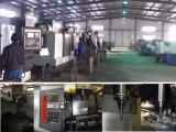 Gebildet in China Soem-Sand-Gussteil-maschinell bearbeitenteilen