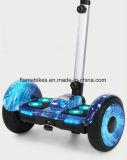 チューブレスの10inch電気漂うスクーター