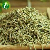 Acido della Rosemary della polvere dell'estratto della Rosemary di alta qualità ed acido di Carnosic