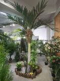 3,5-метровый открытый использовать искусственные Palm Tree