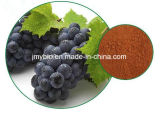 Выдержка/Proanthocyanidins и полифенолы семени виноградины продукта внимательности кожи чисто естественная