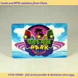 Pilha recarregável de plástico Loco/Hico cartão magnético para o centro de diversão
