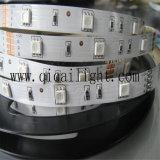 Tira do diodo emissor de luz do fornecedor IP20 24V 2835 do diodo emissor de luz de China com Ce/RoHS