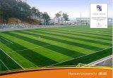 Kunstmatig Gras voor Voetbal, Gras voor Voetbal, het Gras van Sporten (Se40)