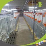 Système de distribution à chaînes d'alimentation de disque employant dans la ferme moderne à vendre