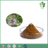 0.2%-2% Sinensetin Orthosiphon Stamineus Auszug-4:1 ~20: 1