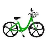 Bicicleta ajustable/bici pública con la cesta del SUS 304