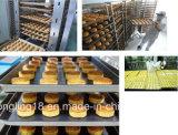 Linha de produção forno da fábrica do pão de túnel elétrico personalizado da padaria desde 1979