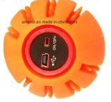 Glühen USB-LED in den dunklen Kugeln für Hunde. Gummihundespielzeug-Haustier-Spielzeug