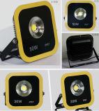 Lumière jaune de plaza de la couleur DEL de l'ÉPI 30W de qualité/lumière de pelouse/lumière carrée/lumière d'entrepôt/lumière d'hôtel/lumière légère lumière de stationnement/inondation du jardin DEL