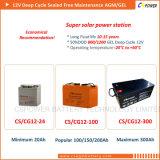 Batería profunda 12V 100ah del AGM del ciclo del uso de la Sistema Solar