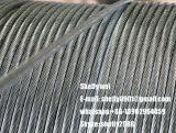 """1X7 Ehs 1 4 '3/8 """" di 5/16 """" ha galvanizzato il codice categoria d'acciaio a del cavo di ancoraggio del collegare di soggiorno del cavo ASTM A475"""