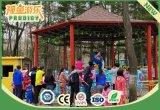 Strumentazione divertente del campo da giuoco di paradiso dei bambini sul giro del Kiddie