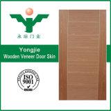 Constructeurs plaqués normaux Chine de peau de porte