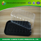 Гарантированная коробка облегченного быстро-приготовленное питания качества Takeaway упаковывая