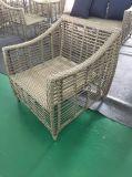 Rattan esterno moderno/mobilia di vimini del giardino di svago del sofà (TG-6009)
