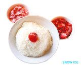 De Machine van de sneeuw, de Machine van Korea Bingsu - Hoge Prestaties