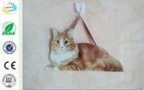 Корабль металлической пластинкы украшения двери дома кота утюга металла напольный