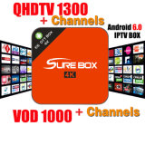 De Arabische Sporten van Qhdtv van de ontvanger Italië het UK DE 1300+ Europa IPTV Workingon E6 dan beter Mxq