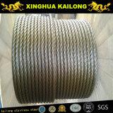Câble métallique d'acier inoxydable (AISI304/316 1*19)