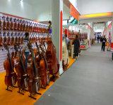 Violon électrique avec l'instrument de musique de proue de violon de caisse de violon
