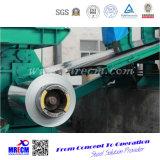 Катушка гальванизированная камуфлированием стальная с высоким качеством