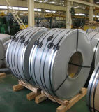 AISI en frío decorativo 201 bobina del acero inoxidable 304 316