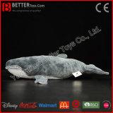 Brinquedo macio Lifelike da baleia azul do luxuoso do animal En71 enchido para miúdos