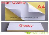 Papel da etiqueta da qualidade superior A3 com bom preço