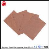 Для изготовителей оборудования на заводе Zhushi магнитных гипса для боли