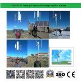 Turbina di vento a bassa velocità a basso rumore con energia solare 50kw