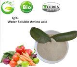 Certifié 100 % organique source végétale 80 % des acides aminés
