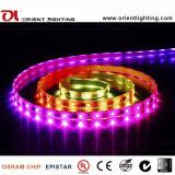 UL Ce 14,4 W/M SMD 5060 tira flexible de LED de Inteligencia Artificial de la luz de pixel